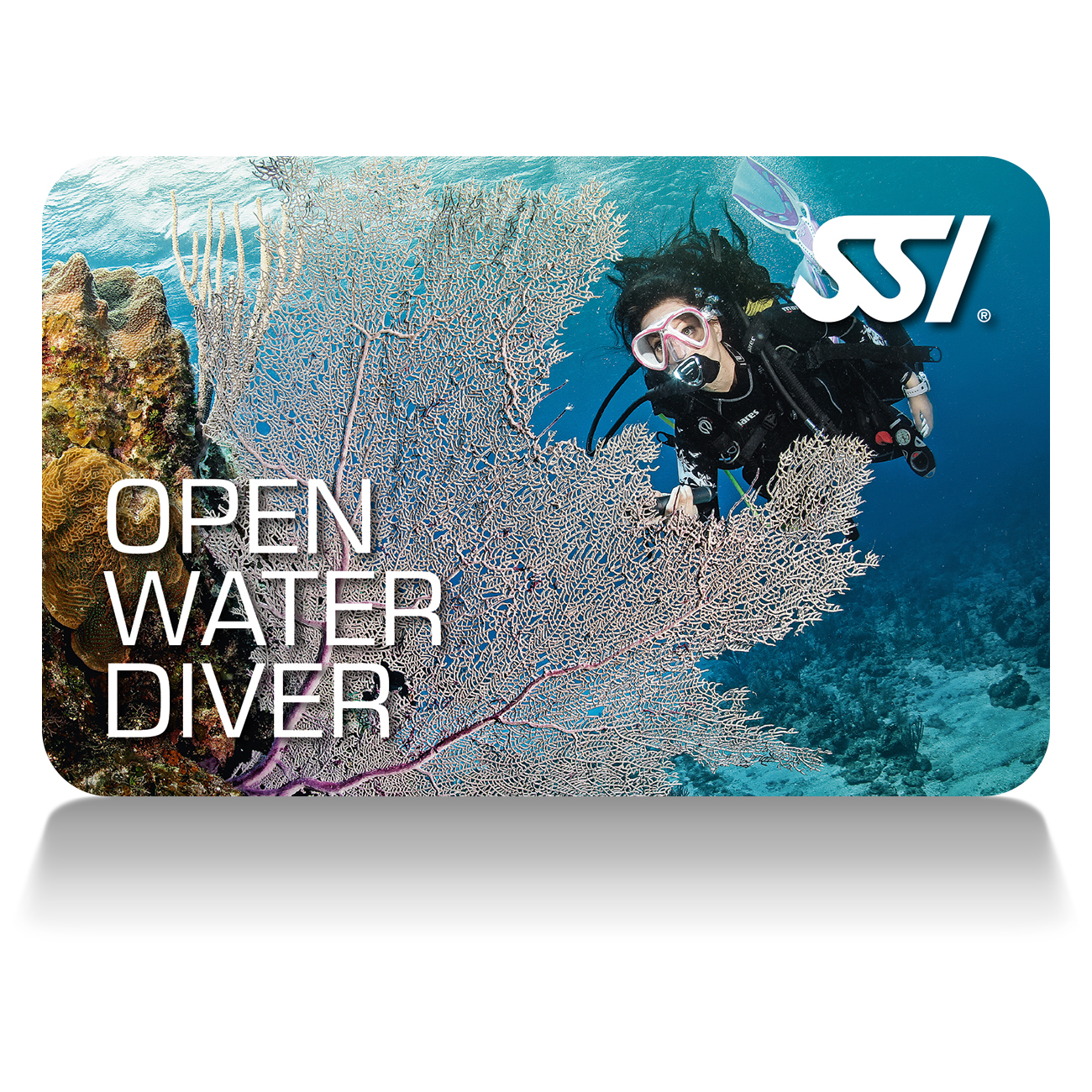 UPGRADE TO OPEN WATER DIVER