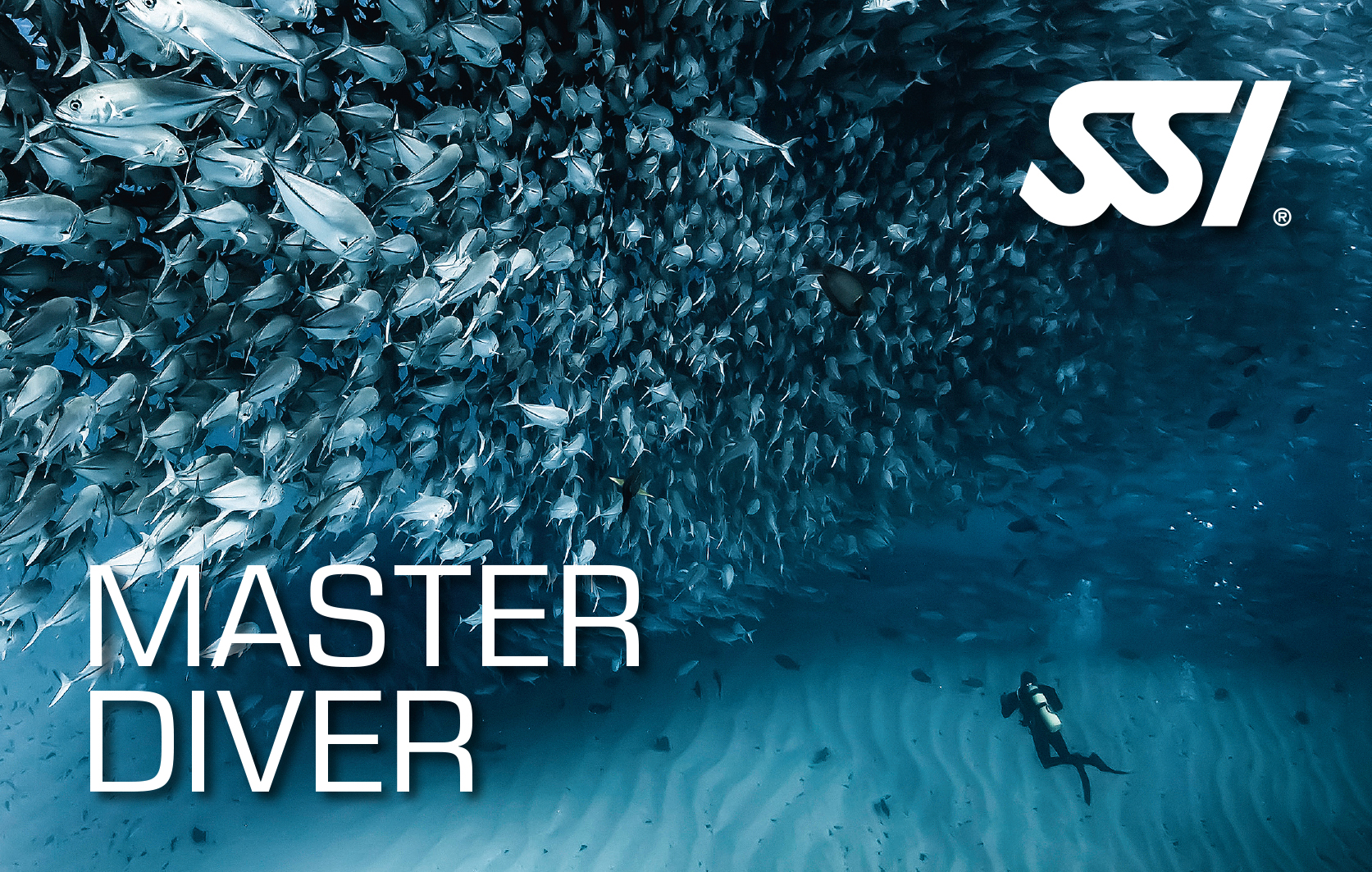 Become a MASTER DIVER