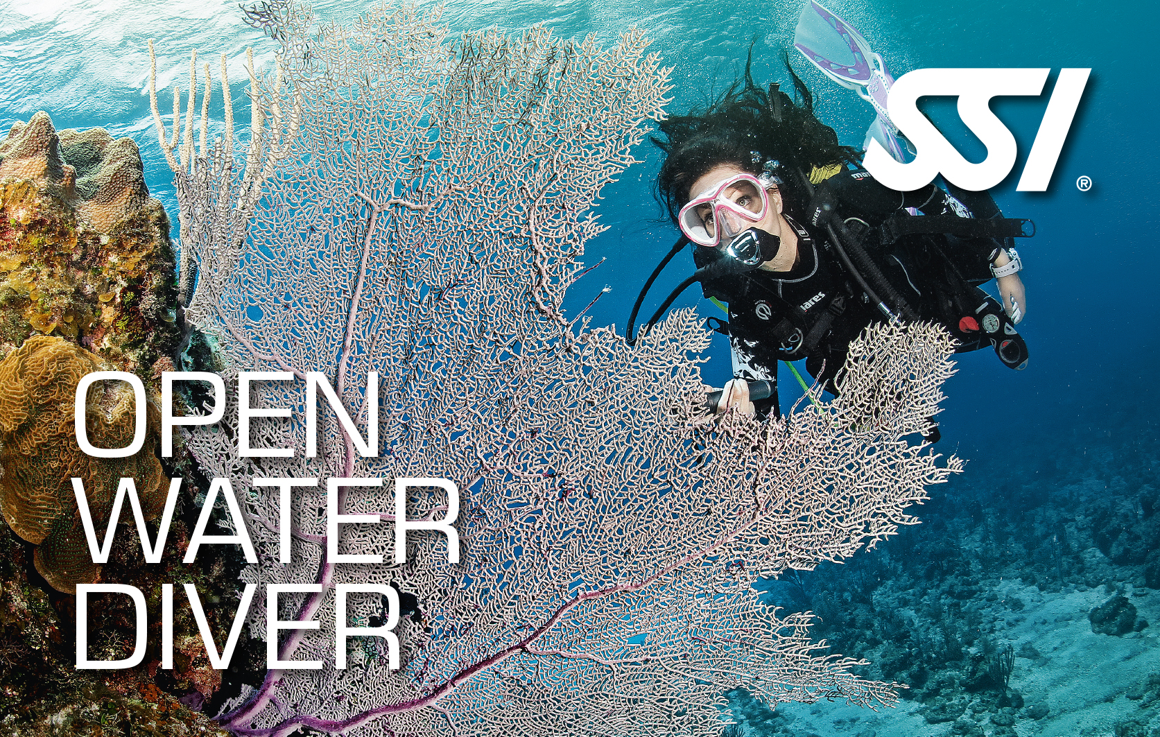 Open Water Diver Bundle