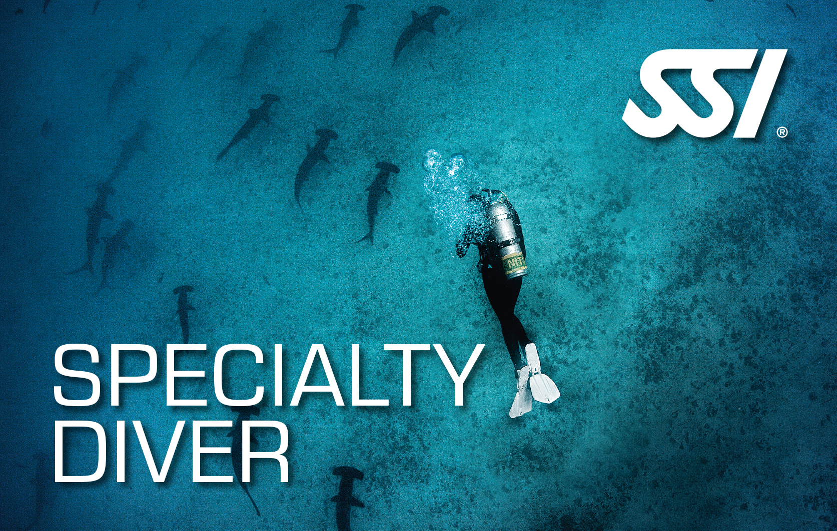 SPECIALTY DIVER PACKAGE