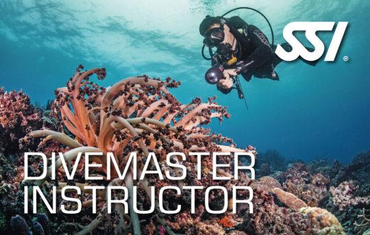 182413-divemaster-instructor